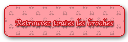 accueil-broches.png
