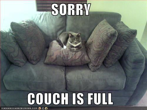 couch-is-full-i-can-has-cheezburger