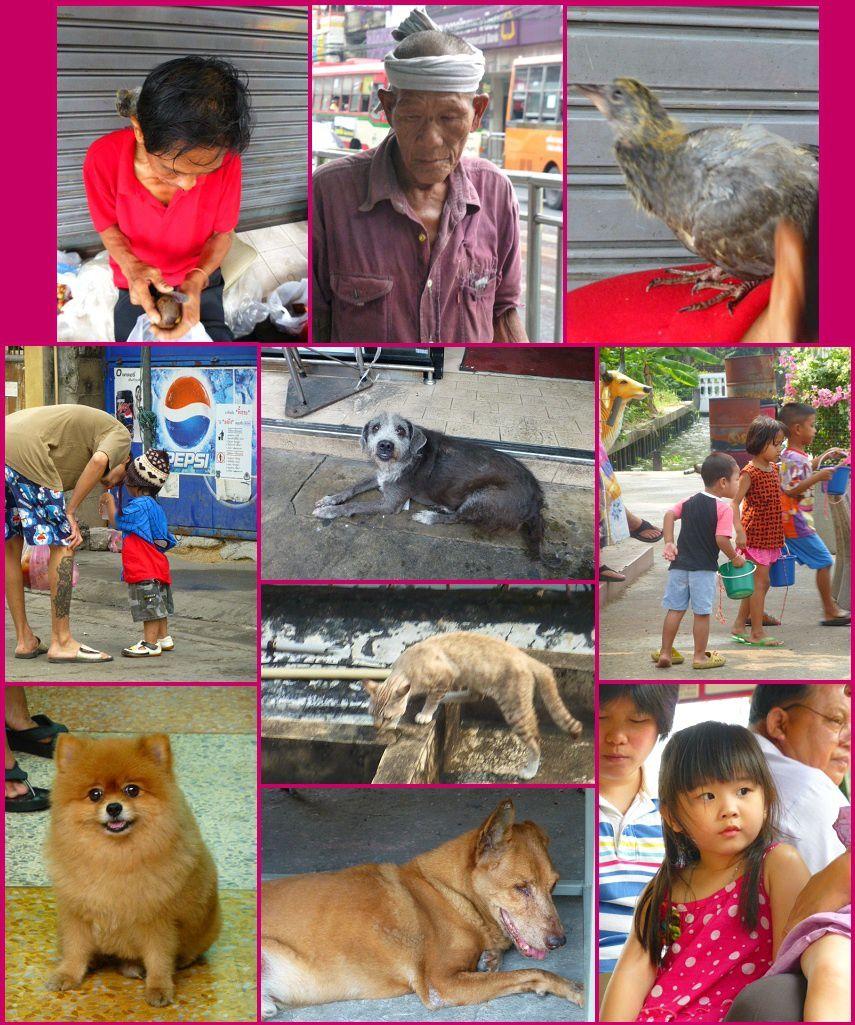 rencontres bangkok