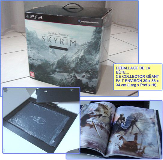 Skyrim collector