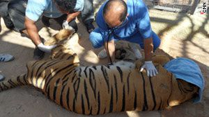 story.tripoli.zoo.cnn.jpg