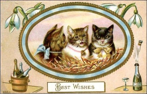 vintage-happy-new-year-cards-three-cats-champagne.jpg