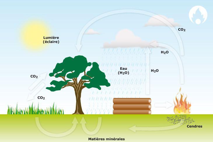 Le bois une energie renouvelable Bois de chauffage lille melantois pev u00e8le les weppes,St u00e8re  # Bois De Chauffage Lille