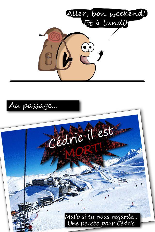 Wkd-Cedric.jpg