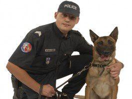 police_chien-265x199.jpg