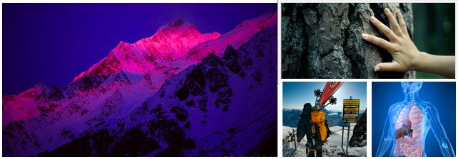 Capture-d-ecran-2011-01-09.jpg