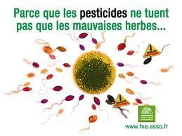 pesticides sperme