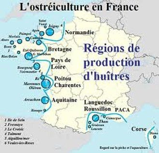 HUITRES FRANCE
