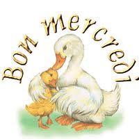 bon mercredi canard