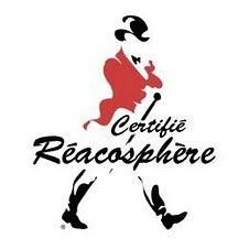 reacosphere.jpg