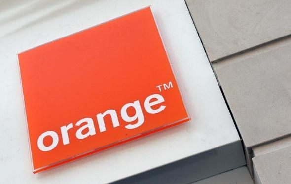 article_orange.JPG