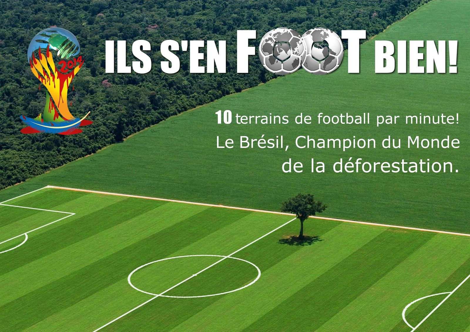 Deforestation Bresil football Brésil champion du monde