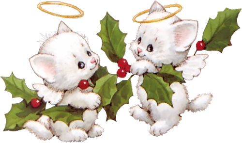 Chatons-houx-Noel.png