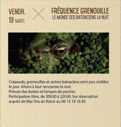 Frequence-grenouille
