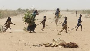 drought_and_8203_ddb59.jpg