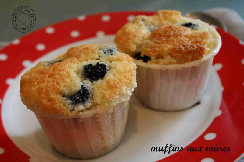 muffin_m_res2
