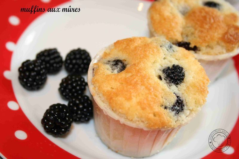 muffin_m_res3