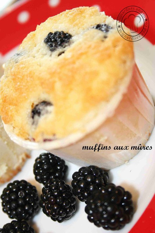 muffin_m_res4