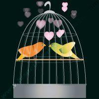 oiseau_min.jpg