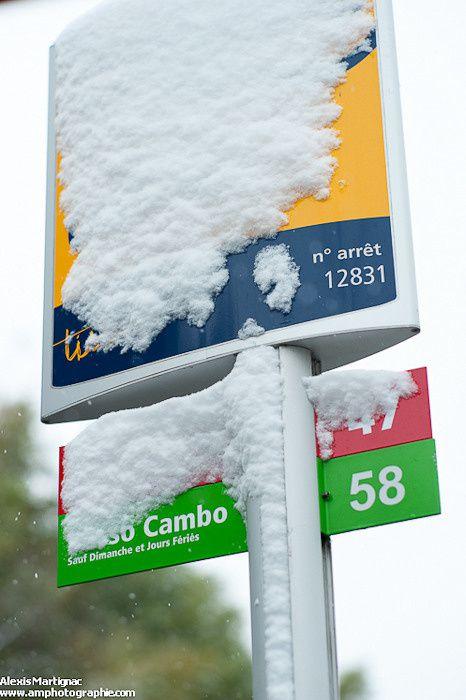 cugnaux-neige-2013-alexis-martignac-3.jpg