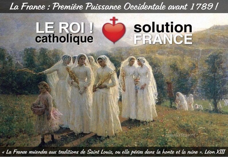 Solution-pour-la-france-roi-catholique-royalistes 3