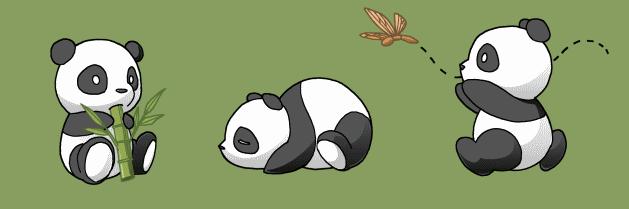 Dessin Facile Panda