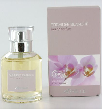orchidee-blanche3.jpg