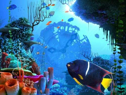 coral_clock_3d_screensaver_20640.jpg