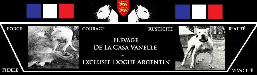 Logo acceuil DLCV 2