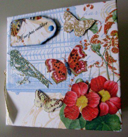 Papillons-1.jpg