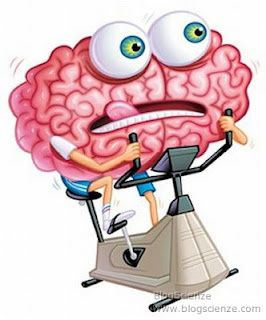 brain-training-ginnastica-cervello-fitness-nintend-copia-1.jpg