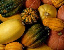 courges_H123213_L.jpg
