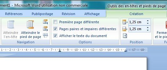Word_pied-de-page_options_1.jpg