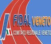 FidalVeneto-copia-1