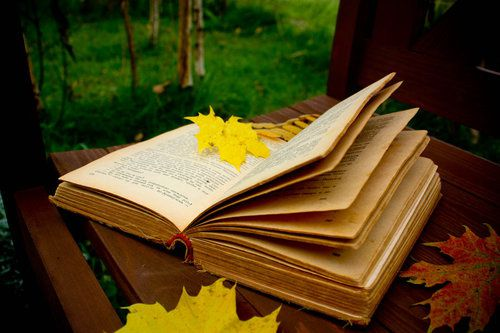 autumn_reading_by_cr1ms0n13-d3006q4_large.jpg