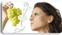 vinotherapie_1.jpg