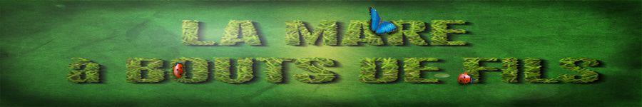 mare-herbe-banniere3.jpg
