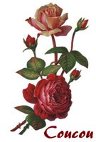 Vict-Vign_roses003.png