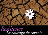resilience 2