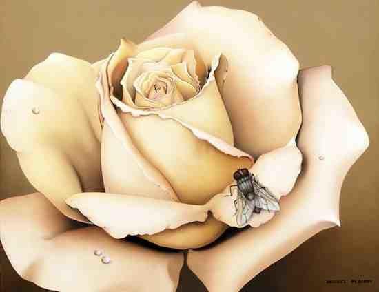 La-rose-a-la-mouche.jpg