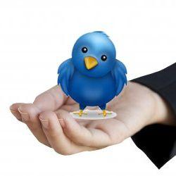 Twitter-emploi-reseaux-sociaux.jpg