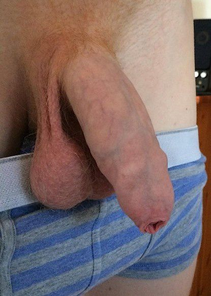 exhib avion bite gay sperme