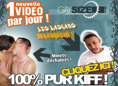 GaySize