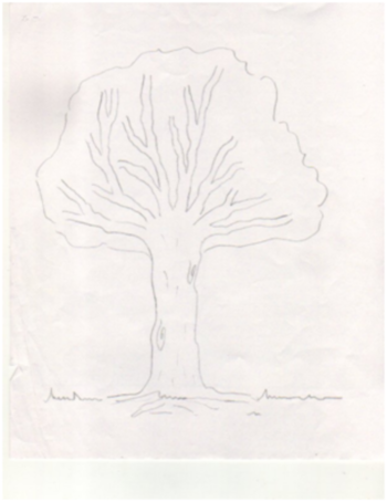 Arbol-1-copia-1.png