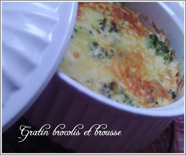 gratin-brocolis-et-brousse-2.jpg