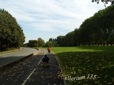 automne10-015-copier.jpg