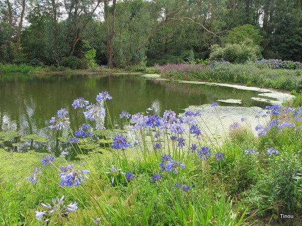 parc botanique de Bretagne
