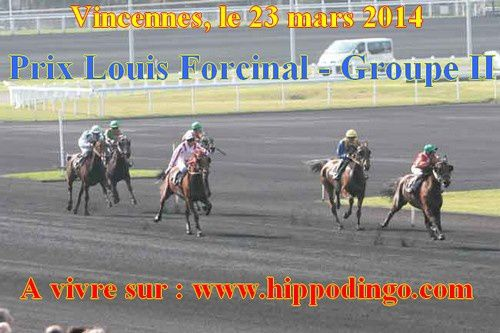 Louis Forcinal 2014
