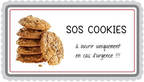 Fabulous SOS Cookies - FlashGourmand MJ59