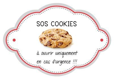 Bekannt SOS Cookies - FlashGourmand TO24